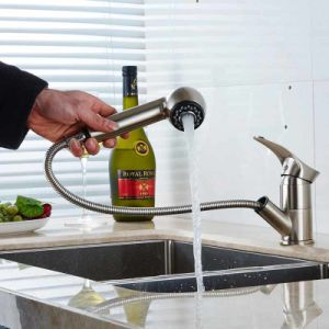 FLG Nickel Brushed House Kitchen Basin Sink Faucet pictures & photos