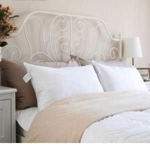 Teflon Water Proof White Goose Down Pillow for Hotel pictures & photos