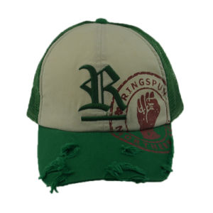 Custom 6 Panels Embroidery Baseball Hats Cotton Snapback Trucker Hat pictures & photos