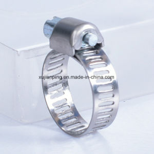 Bandwidth 8mm American Type Hose Clamp pictures & photos