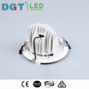 Adjustable 10W/20W/30W COB LED Spotlight with Ce, SAA, RoHS (MQ-7038) pictures & photos