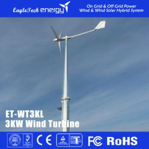 3kw Wind Turbine Generator Wind Mill Wind Power System