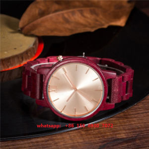 Lovely Fashionable Quartz Wooden Watch with Wooden Bands for Women Fs531 pictures & photos