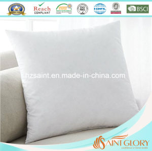 Hotel Economic White Duck Feather Cushion Insert Hotwl Cushion pictures & photos