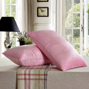 100% Polyester Soft Crystal Velvet Pillow pictures & photos