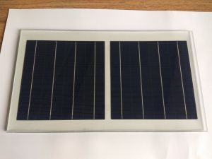 156*156mm 4bb Multi Polycrystalline Silicon Material Solar Cells pictures & photos