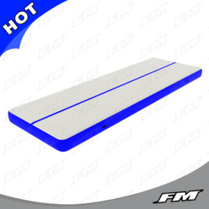 FM 2X12m Blue P2 Dwf Inflatable Air Tumble Track pictures & photos
