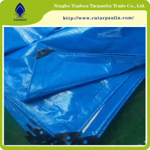New Reinforced Polyethylene Sheets, PE Tarpaulin of China Manufacturer To001 pictures & photos