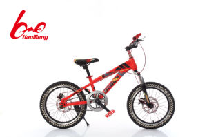 24 Snake One Wheel140 V Brake3.0 Tire BMX Bicycle pictures & photos