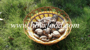 Bulk Organic Vegetable Whole Smooth Dried Shiitake Mushroom pictures & photos