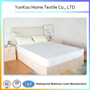 White Fitted Mattress Protector Waterproof Elastic mattress Cover King pictures & photos
