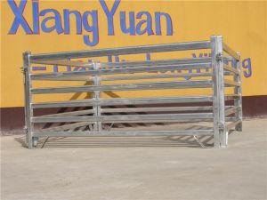 Australian Standard 2.1mx1.8m Cattle Panel pictures & photos