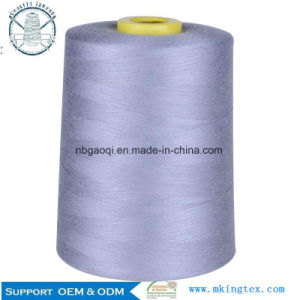 Fire Retardant Meta-Aramid Thread pictures & photos
