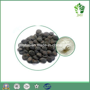 Pure Natural Griffonia Seed Extract 5-Hydroxytryptophan 98% 5-Htp pictures & photos