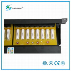 1u 24 Port CAT6 UTP Patch Panel pictures & photos