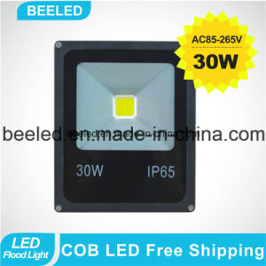 30W Yellow Outdoor Lighting Waterproof Lamp LED Flood Light pictures & photos