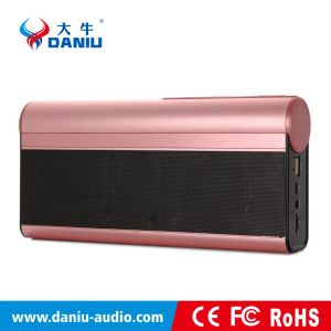 Mini Indoor / Outdoor Portable Stereo Wireless Strong Bass Bluetooth Speaker, FM Radio, Hands Free Speaker (DS-7603)