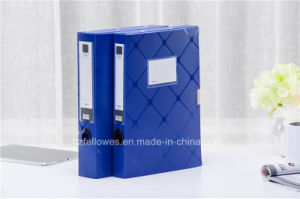Plastic File Box, Stationery Document Box pictures & photos