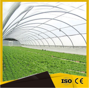 The Cheapest Hot Sale Commercial Plastic Greenhouse pictures & photos