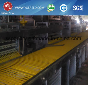 H Type Galvanized Layer Cage for Egg Chicken pictures & photos