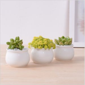 Square White Flower Pot Containing Base pictures & photos