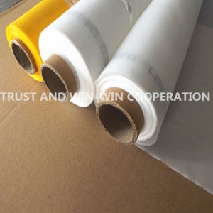 Screen Printing Mesh for Textile From China (FM0150220A-001) pictures & photos