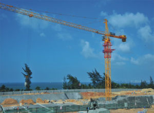 Tip Load Construction Self Erecting Building Crane pictures & photos