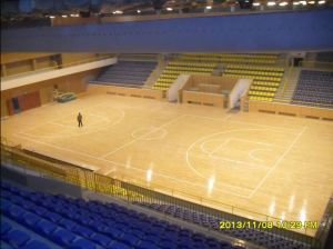 Widely Used Among School Basketball Court Wooden Floor pictures & photos