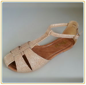 Women New Dress Sexy Sandal pictures & photos