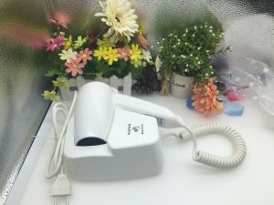 Hotel Bathroom Wall Mounted Professional Hair Dryer pictures & photos