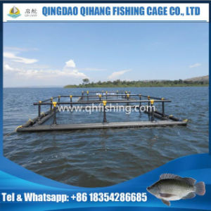 Aquaculture Fish Tank, Fish Farming Cage for Uganda pictures & photos