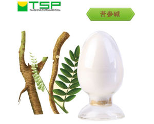 GMP Factory Supply Natural Sophora Flavescens Extract Powder 98% Matrine pictures & photos