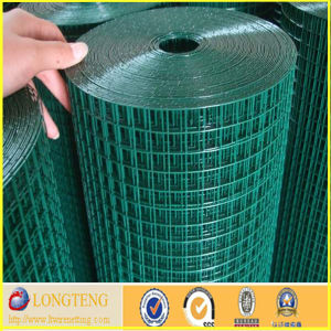 Anping 1/2 Inch PVC Coated Welded Wire Mesh (LT-016)