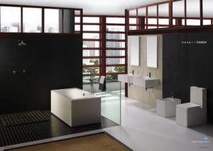 Ceration Toilet, Bidet, Basin