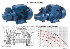 Qb Peripheral Centrifugal Pump pictures & photos