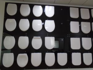 Duroplast Soft Close Square Toilet Cover pictures & photos