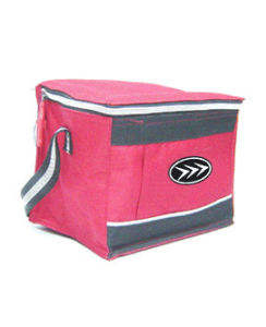 Promotional Fashion Custom Insulated Cooler Bag