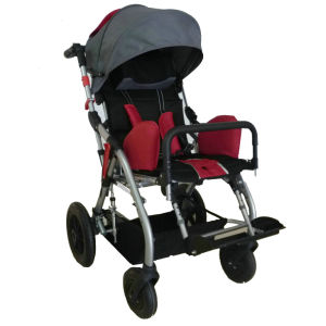 Rehab Buggy (PC22-1)