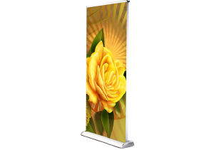 Display Stand Double Sides Banner Stand (DW-LD2 85CM) pictures & photos