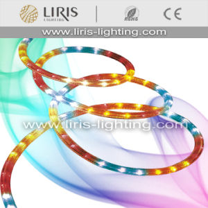 LED Rope Light (BY-LRR-3W)
