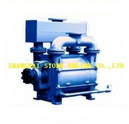 2be1 Water Ring Vacuum Pump pictures & photos