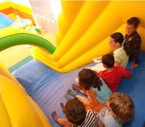 New Huge Outdoor Backyard Kids Inflatable Slide Inflatable Castle Inflatable Bounce House pictures & photos