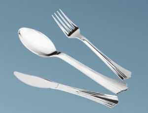 Popular Style Plastic Cutlery in Stainless Silver Coated Color pictures & photos