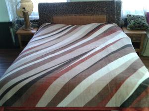 Printing Raschel Mink Acrylic Blanket pictures & photos