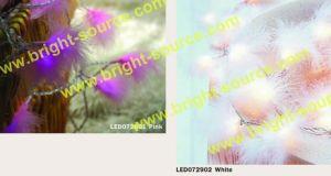 10L/20L LED Feather Light