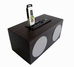 Mini Sound Box with Card Reader SD USB Function (DM10-03)