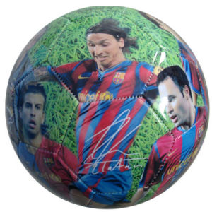 Soccer Ball, 32panels, Machine-Stitching, Photo Printing (B01302) pictures & photos