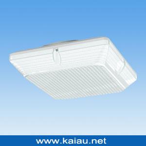 Motion Sensor LED Light (KA-HF-D107P) pictures & photos