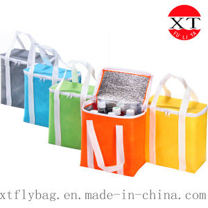 Ice Cooler Trvel Hand Bag (FLY-JH12) pictures & photos