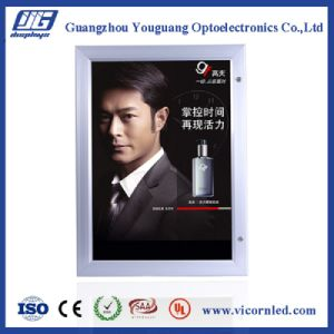 Hot sale: Waterproof Outdoor lockable LED Light Box-YGW52 pictures & photos